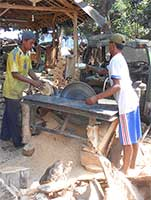 Teak Wood Factory Indonesia